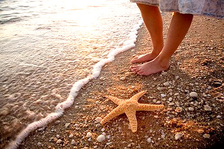 estrela_do_mar